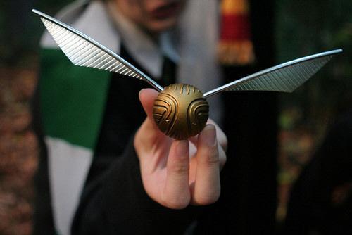 Quidditch - Le vif d'or